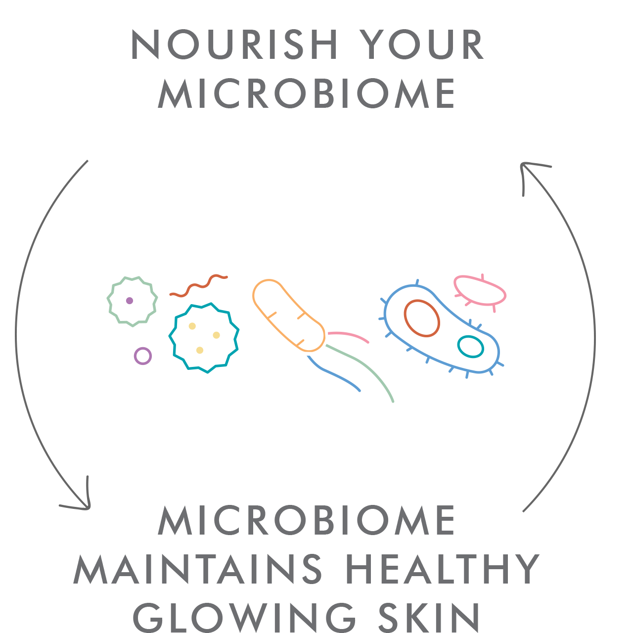 Microbiome Cycle