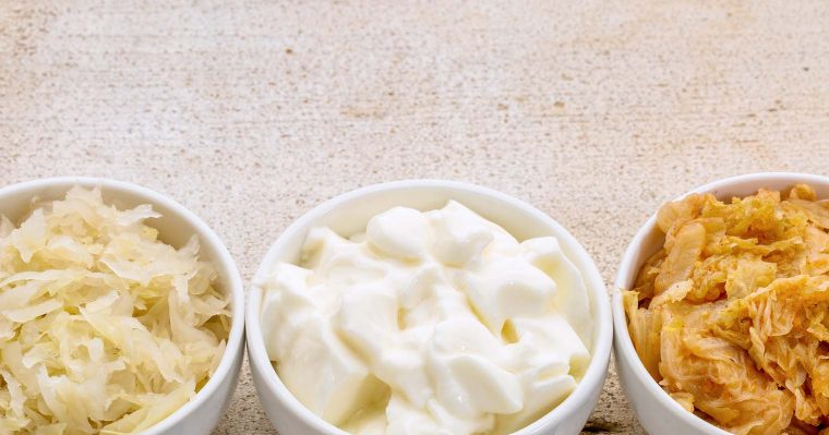 fermented food rich in probiotics