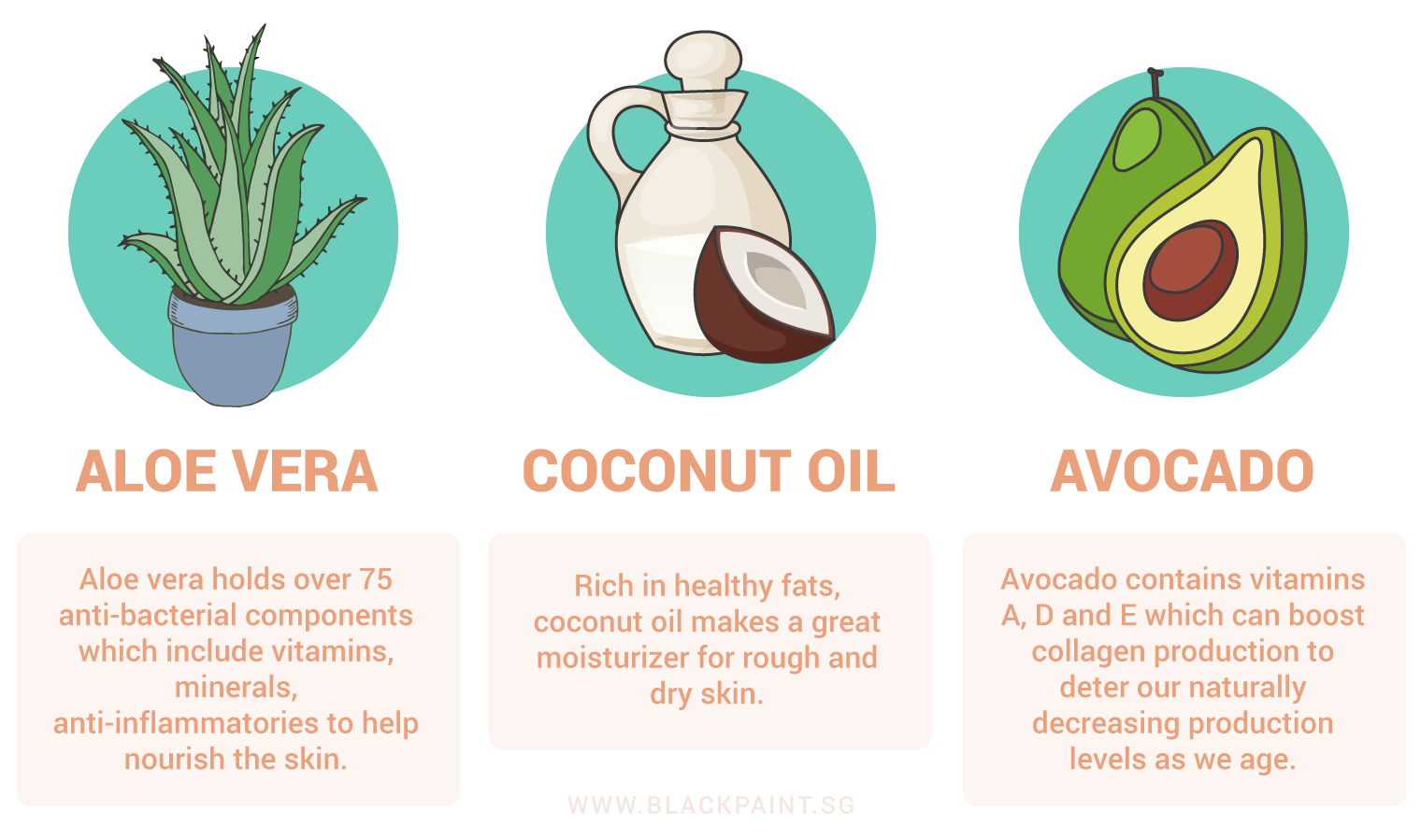 illustration of natural ingredients to treat skin aging problems