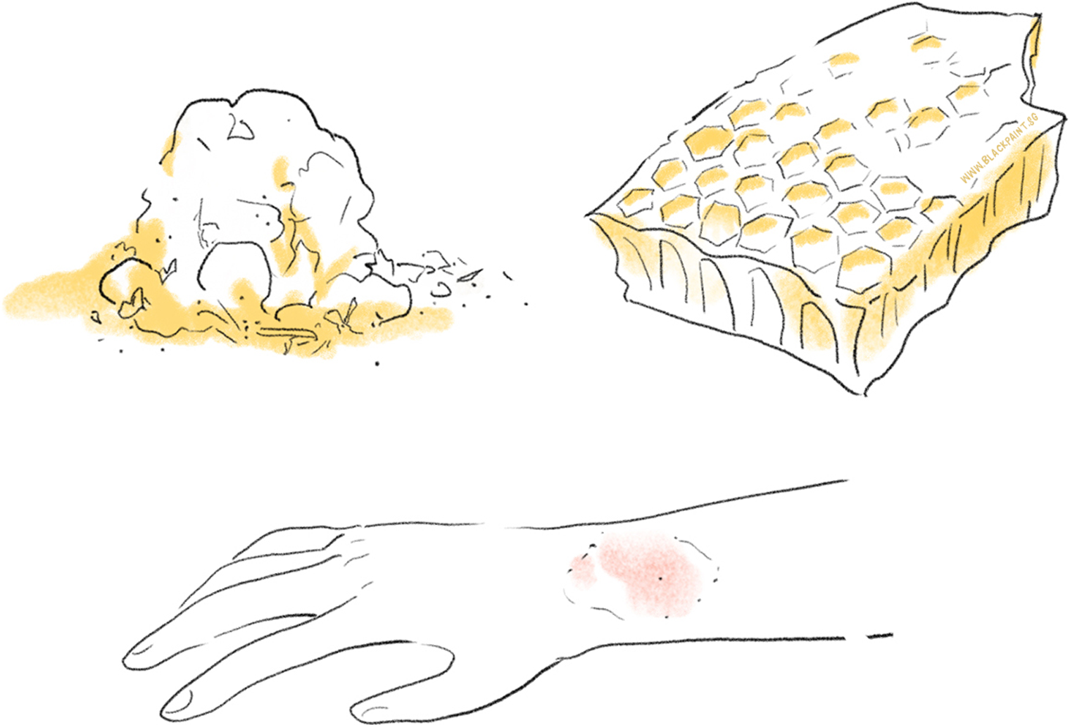 illustration of bee products having antibacterial actions for skin healing