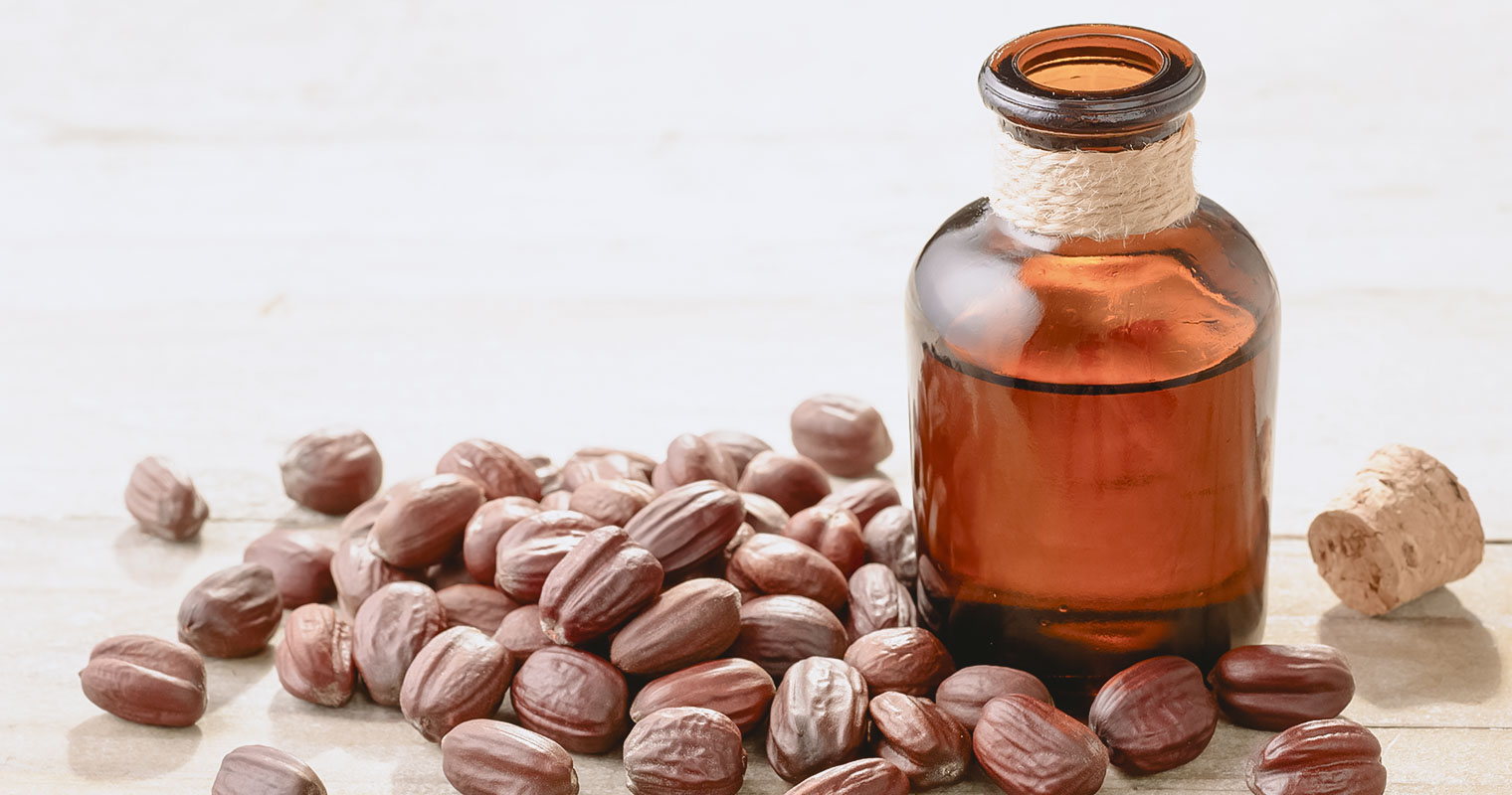A bottle of Jojoba oil surrounded by Jojoba seeds