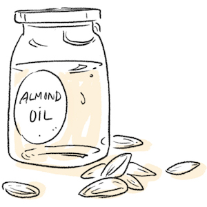 Hand drawn illustration of a bottle of Almond oil and almond seeds
