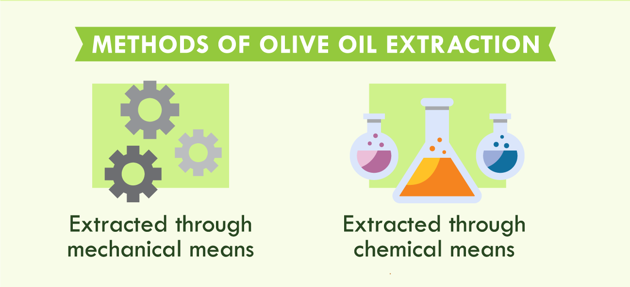 illustration of methods of olive oil extraction