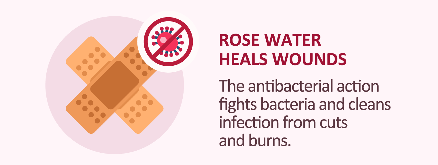 illustration of rose water heals wounds